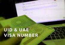 uae visa number