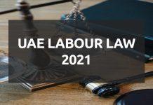 UAE Labour Law 2021 PDF Download